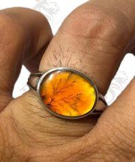 A-1072 انگشتر عقیق شجر پرتقالی