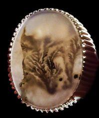 انگشتر کلکسیونی و بسیار خاص شجر به شکل تمثیل کله گرگ به شکل کامل بسیار استثنایی و موزه ای با پایه فدیوم مدل ریز دندان SH-48